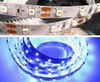 B 60/m LED strip 3528-60B-8MM-12V-4.8W (метражом)
